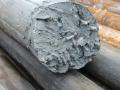 Du 9 au 24 juin : Forage, Echantillonnage et Reconnaissance géologique -Corail dans de l\'argile indiquant un ancien lagon maintenant à 62 m de profondeur